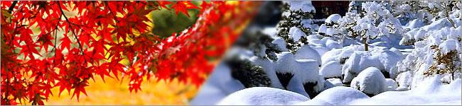 秋冬の商品【信玄堂】
