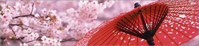 春の商品【信玄堂】